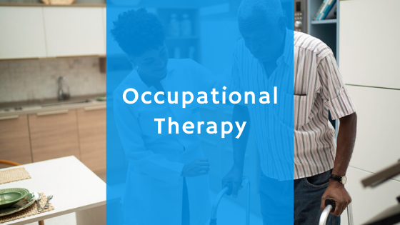 Occupational Therapy Program
